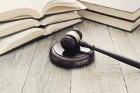 A nova Lei de Licitações e o Sistema de Controle Interno